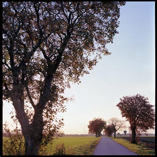 autumn-sunset-1