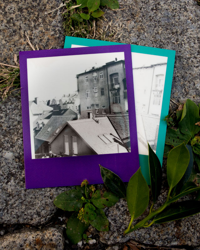 polaroid with rainbow frames